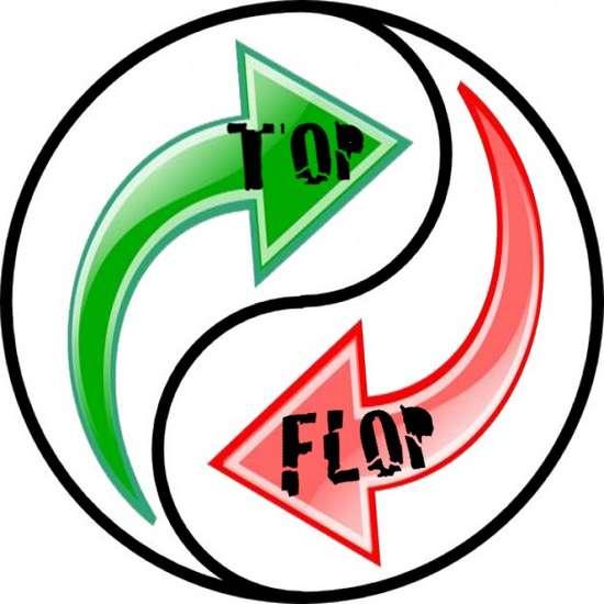 yin-yang-TOP-FLOP-02